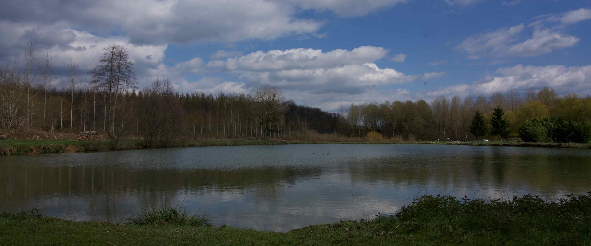 L'étang de Thury